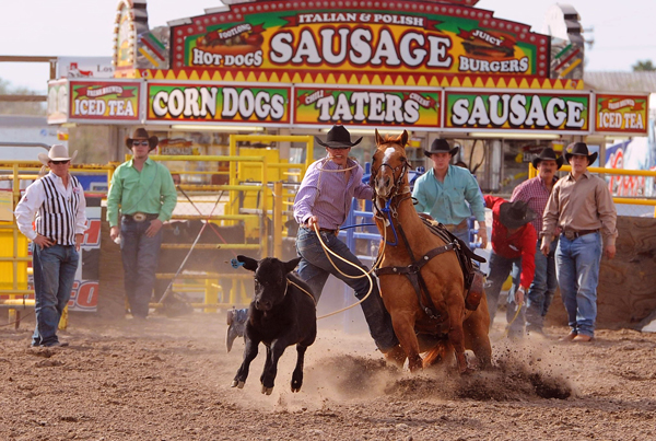 Top notch competitors and livestock will be at the 28th Annual PRCA Rodeo in Los Fresnos again this year. The audience can enjoy great calf-roping (above), barrel racing, bull dogging, team roping, bareback and saddle bronc riding and the ever popular bull riding. Award winning Stock Contractor Stace Smith will provide the livestock and produce the rodeo events. Photo: Rex Hewitt/LFN File Photo