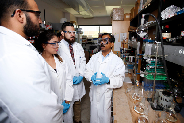 Dr. Debasish Bandyopadhyay (at right), a faculty member in the UTRGV Department of Chemistry in the College of Sciences, discusses with his team of students the research they are conducting on avocado husks. Bandyopadhyay and his students have found chemical compounds in the husks that may be able to help treat certain diseases such as cancer and heart disease. Photo: Paul Chouy/UTRGV
